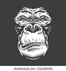 Face of gorilla isolated on white. Vector concept illustration