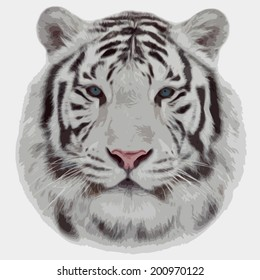 Face portrait of white bengal tiger, isolated on white background. Amazing mask of the biggest cat. Wild beauty of the most dangerous, but cute and cuddly beast of the world. Vector animal image.