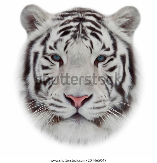 Face White Bengal Tiger Isolated On Stock Vector (Royalty