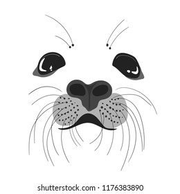 Face of white seal pup. Adorable pup, vector illustration. Hand drawn illustration of marine animal