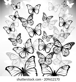 faded butterfly fly up. Vector