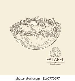 Falafel in pita with vegetables: falafel, pita, tomato, lettuce and olives. Vegetarian fast food. Vector hand drawn illustration