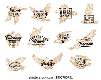 Falcon and eagle bird, isolated sketch icons. Vector hunting club symbol, american legend, falconry hawk skyhunter. Emblem with flying falcon, symbol of freedom, wild soul, winged king of sky