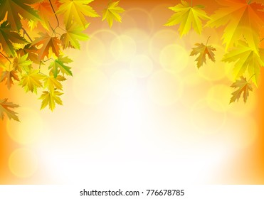 Fall background for orange season with collection of orange and yellow maple leaves falling and with empty or blank space for text. Vector illustration.