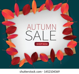 Fall leaves on wooden frame board with autumn sale typography text. Seasonal background. vector illustration.