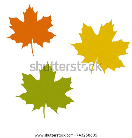 fall leaves vector set autumn season stock vector royalty free rh shutterstock com fall leaves vector image fall tree leaves vector