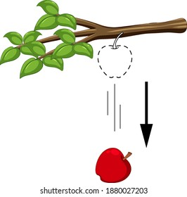 Fallender Apfel für Gravitationsexperimentelle Illustration