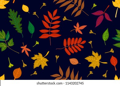 Falling autumn leaves. Colorful leaves on dark background. Seamless panoramic vector pattern with botanical motifs.