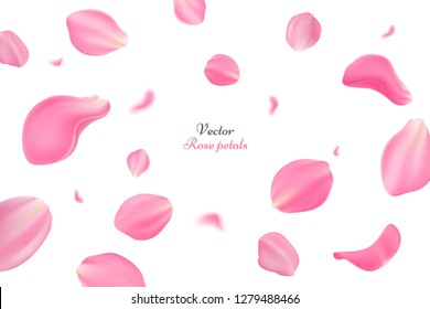 Falling pink rose petals isolated on white background. Vector illustration with beauty roses petals. Applicable for design of greeting cards on March 8, wedding and St. Valentine's Day. Eps 10