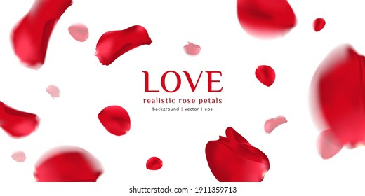 Falling red rose petals isolated on white background. Vector illustration with beauty roses petal