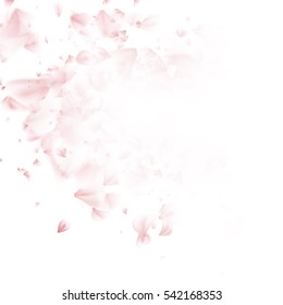 Falling sakura pink petals background. EPS 10 vector file included