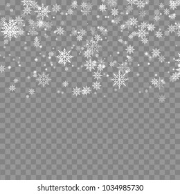 Falling snowflakes on transparent background. Vector