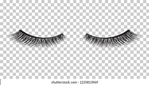 False eyelashes. Mascara decorative element vector illustration
