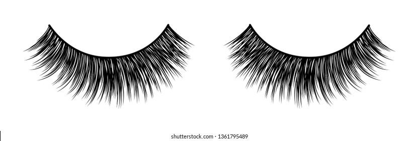 False lashes vector illustration set. Female eyelashes collection. Woman beauty product. Trendy fashion illustration for mascara pack or beauty products design.