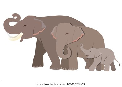 Family of elephant graphic vector