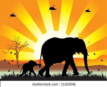 Family of elephants on nature walk, vector illustration