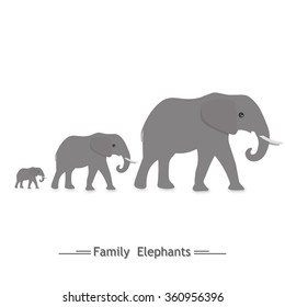 the family of elephants, three, logo, shadow