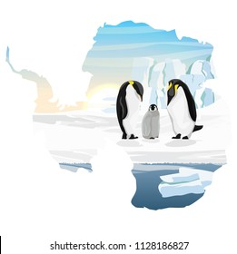 Family of emperor penguins with a chick. Care for the offspring. Realistic Antarctic landscape. Vector illustration in the form of a map of the continent of Antarctica.