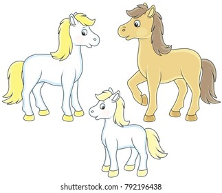 A family of a horse, a little foal and a courser, black and white vector illustrations in funny cartoon style for a coloring book