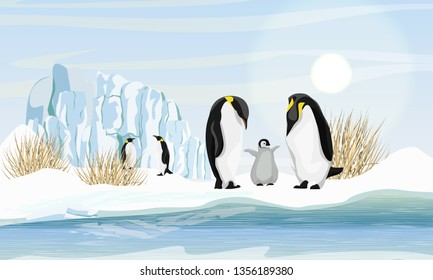 A family of realistic emperor penguins with a chick by the sea or ocean. Glacier and dry grass. Snow. Landscapes of the Antarctic. Realistic Vector Landscape