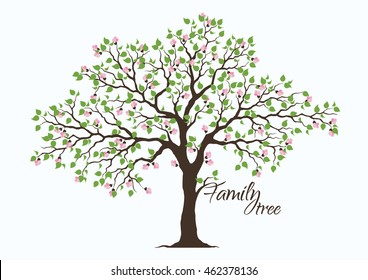 Family Tree Images Stock Photos Amp Vectors Shutterstock