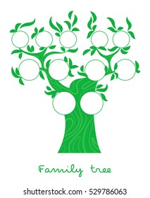 Family tree chart, genealogical tree forfamily portraits, pedigree photo frame thin line style vector