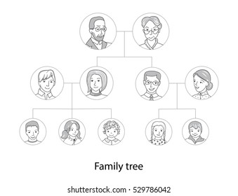 Family tree chart, genealogical tree offamily portraits. Pedigree thin line style vector