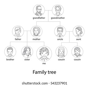 family tree chart genealogical tree family portraitspedigree thin line style vector