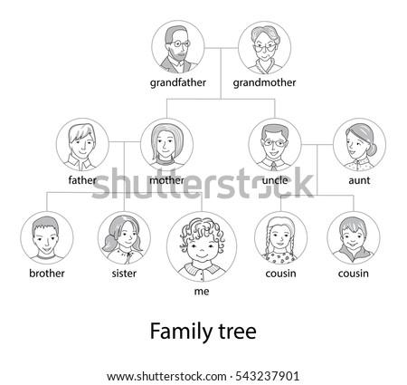 family tree chart genealogical tree family のベクター画像素材