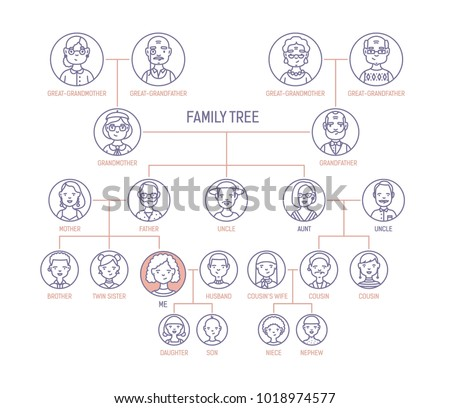 family tree pedigree ancestry chart template stock vector royalty