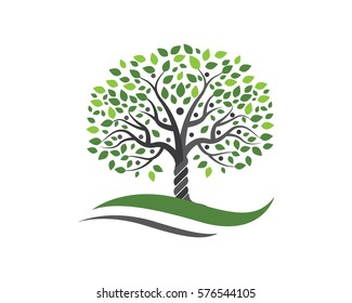 family tree symbol icon logo design template