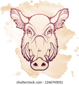 Fanged wild boars head. Mascot of the New Year 2019 according to Chinese zodiac calendar. Linear drawing isolated on textured watercolor background. EPS10 vector illustration