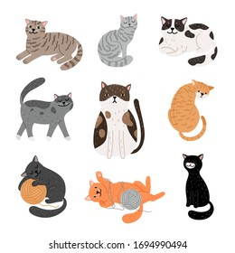 Fanny cartoon cats in different poses. Domestic cats sleeping and walking, sitting and playing, happy and sad kitten vector icons on white background