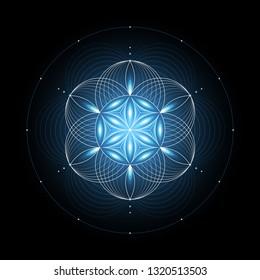 "Fantastic sacred geometry; Shiny ancient symbol ""flower of life"" on black background; Psychedelic vector illustration."