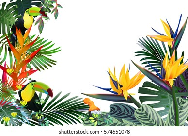 fantastic tropical forest with exotic birds, flowers, leaves, vines: toucan, Strelitzia, Gloriosa, Andean cock-of-the-rock.Vector illustration