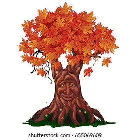 Fantasy deciduous tree with face in the fall isolated on white background. Golden autumn in the enchanted forest. Vector cartoon close-up illustration.