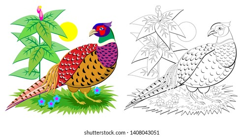 Fantasy illustration of cute pheasant with bright feathering. Colorful and black and white page for coloring book for kids. Printable worksheet for children. Vector cartoon image.