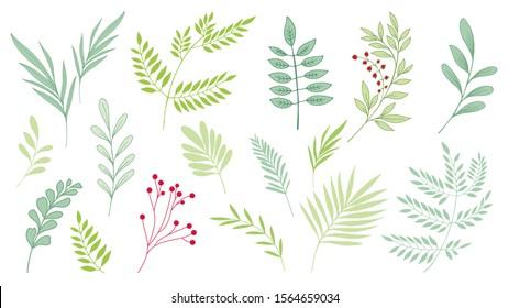 Fantasy leaves. Floral design. Hand drawn botanic vector. Set leaves.