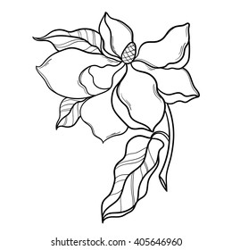 Fantasy Magnolia Flower With Leaf Vector Floral Artwork Coloring Book Page For Adult