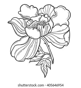 Fantasy Peony Flower With Leaf Vector Floral Artwork Coloring Book Page For Adult