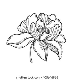 Fantasy Peony Flower Vector Floral Artwork Coloring Book Page For Adult Summer