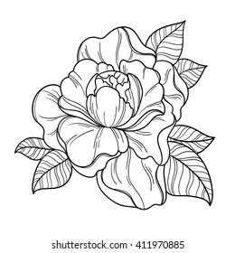 Fantasy peony flower. Peony vector floral artwork. Coloring book page for adult. Summer bohemia concept for wedding invitation, card, ticket, boutique logo, label, emblem. Black and white