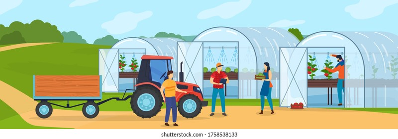 Farm agriculture vector illustration. Cartoon flat farmer people growing organic vegetables in greenhouse or hothouse, harvesting, tractor with trailer taking crop to agricultural market background