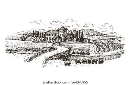 Farm, agriculture or vineyards sketch. Vintage landscape vector illustration
