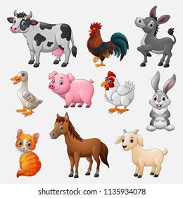 Farm animal collection set on white background
