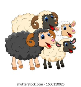 Farm animal group family. white  Sheep, lamb,  black ram   design isolated on white background. Cute cartoon animals collection Vector illustration