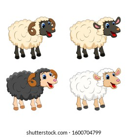 Farm animal group. white  Sheep, lamb,  black ram   design isolated on white background. Cute cartoon animals collection Vector illustration