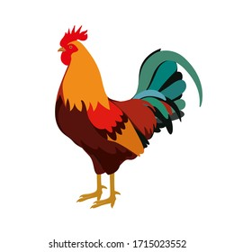 Farm animals cock rooster vector