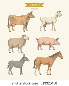 Farm animals collection. Vector illustration of hand drawn color farm mammals in retro style, including cow, goat, sheep, pig, donkey and horse, isolated on background.
