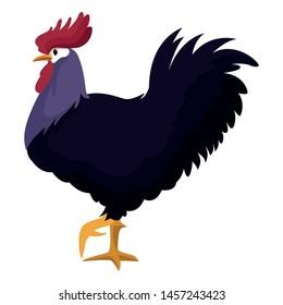 farm, animals and farmer rooster icon cartoon vector illustration graphic design